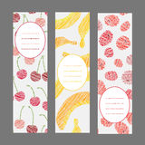 Set of Vertical Fruit Banners. Harvest berry ornament. Vector Illustration. Stock Photography