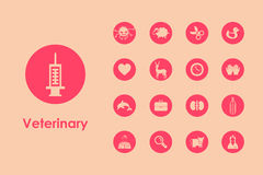 Set of veterinary simple icons Royalty Free Stock Photo