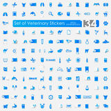 Set of veterinary stickers Royalty Free Stock Image