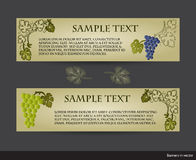 Set of vintage banners with grape vines Stock Image