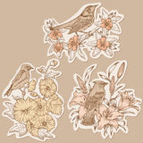Set of Vintage Birds and Flowers on tags Stock Photography