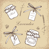 Set of vintage bottles. Vintage hand drawn vector illustration  on  beige background. Engraving illustration. Collection of vintage bottles, lavender flowers Stock Photography