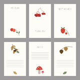 Set of vintage cards templates . Set of of vintage cards templates. Template for scrapbooking, diary, notebooks. Thank you card, save the date cards. Hand draw stock illustration