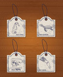 Set of 4 vintage design elements seafood: sea Royalty Free Stock Images