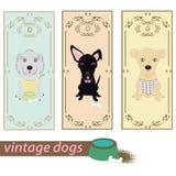 Set of vintage dogs Stock Photo