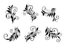 Set of vintage floral elements Stock Image