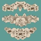 Set of vintage flowers compositions. On dark teal background Stock Image