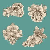 Set of vintage flowers compositions Royalty Free Stock Image