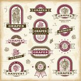 Vintage grapes labels set Royalty Free Stock Photo