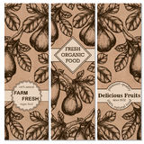 Set of vintage hand drawn sketch banners with figs. Vintage eco food drawing. Vector illustration Stock Photos