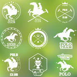 Set of vintage horse polo club labels and badges Royalty Free Stock Photography