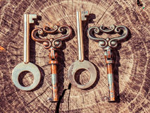 Set of vintage keys Royalty Free Stock Image