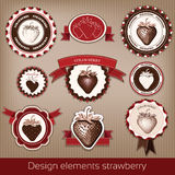 Set of vintage and modern icons of strawberries. Stock Image