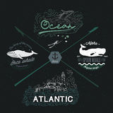 Set of vintage nautical  logos, design elements. Marine Image: whale, water, ocean, lighthouse, seascape. Royalty Free Stock Images
