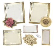 Set of vintage notepaper. And drawings of flowers Royalty Free Stock Images