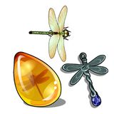 Set of vintage objects and jewelry on the theme of dragonflies isolated on a white background. Insect in amber. Vector royalty free illustration