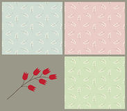 A set of vintage patterns with bellflowers Royalty Free Stock Images