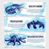Set of vintage Seafood banners. Stock Photos