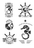 Set of vintage seahorse labels, emblems and design elements. Vector Royalty Free Stock Photos