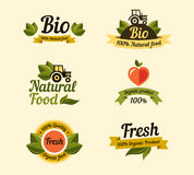Set of vintage style elements for labels and Stock Photo