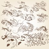 Set of vintage vector swirl ornaments for design Royalty Free Stock Photography