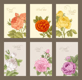 Set of vintage  vertical label Stock Images