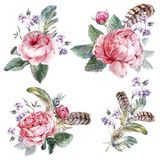 Set vintage watercolor bouquet of roses feathers Stock Image