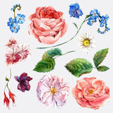 Set vintage watercolor bouquet of roses and Royalty Free Stock Images