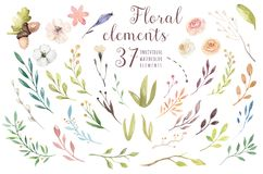 Set vintage watercolor green elements of flowers, garden and wild flowers, leaves, branches flowers, illustration. Isolated, greenery bohemian bouquet Stock Photo