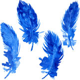 Set of violet plumes Royalty Free Stock Images