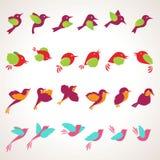 Set Vogelabbildungen Stockfoto