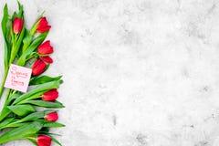 Set von 9 Abbildungen der wundervollen mehrfarbigen Tulpen Tulpen nahe Frühling ist kommende Handbeschriftung auf grauem Draufsic Lizenzfreies Stockfoto