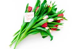 Set von 9 Abbildungen der wundervollen mehrfarbigen Tulpen Tulpen nahe Frühling ist kommende Handbeschriftung auf weißem Draufsic Lizenzfreies Stockbild