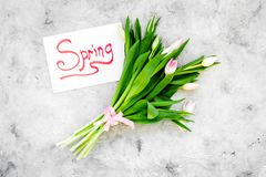 Set von 9 Abbildungen der wundervollen mehrfarbigen Tulpen Tulpen nahe Frühlingshandbeschriftung auf grauem Draufsicht-Kopienraum Stockfoto