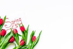 Set von 9 Abbildungen der wundervollen mehrfarbigen Tulpen Rote Tulpen nahe Frühling übergeben Beschriftung auf weißem Draufsicht Stockfotografie