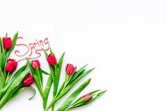 Set von 9 Abbildungen der wundervollen mehrfarbigen Tulpen Rote Tulpen nahe Frühling übergeben Beschriftung auf weißem Draufsicht Stockbilder