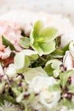 Set von 9 Abbildungen der wundervollen mehrfarbigen Tulpen Schöner Luxusblumenstrauß von Mischblumen in der Frauenhand die Arbeit Lizenzfreie Stockbilder