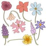 Set von Hand gezeichnet Sommerblumen Stockbild