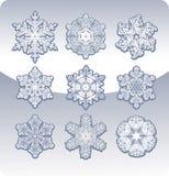 Set würdevolle Schneeflocken. Stockbilder