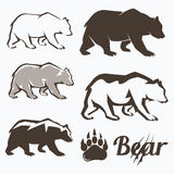 Set of walking bear silhouettes Stock Photography