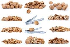 Set of walnuts Stock Photos