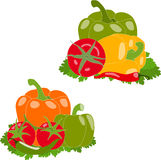 Set warzywa, ilustracja, Zdjęcia Stock