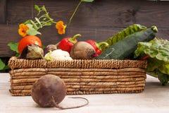 Set warzywa w łozinowym koszu W pierwszoplanowym buraku zdjęcia royalty free