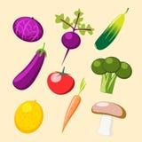Set warzywa wektorowi Obraz Stock