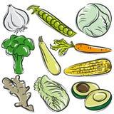 Set warzywo, czosnek, grochy, kapusta ilustracji