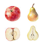 Set of watecolor fruit clipart Stock Photos
