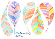 Set of watercolor abstract feathers Royalty Free Stock Photography