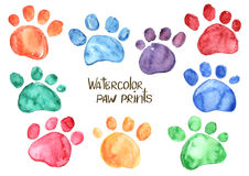Set of watercolor animal footprints Stock Image