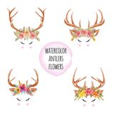 Set of Watercolor antlers flowers vector illustration