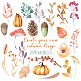 Set of watercolor autumn plants: pumpkins, fir cones, wheat spikes, yellow leaves, fall berries, acorns